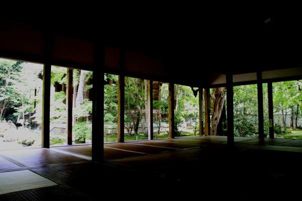 蓮華寺 緑に染まる_e0048413_21135670.jpg