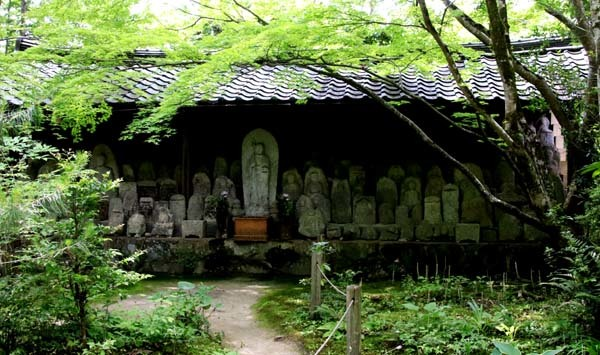 蓮華寺 緑に染まる_e0048413_21141584.jpg