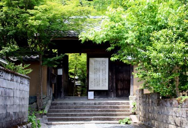 蓮華寺 緑に染まる_e0048413_21141901.jpg