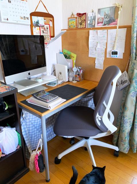 新しい椅子がやってきた_d0355333_22093778.jpg