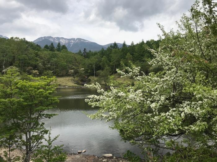 八ヶ岳の天満敦子_b0084241_18394845.jpg