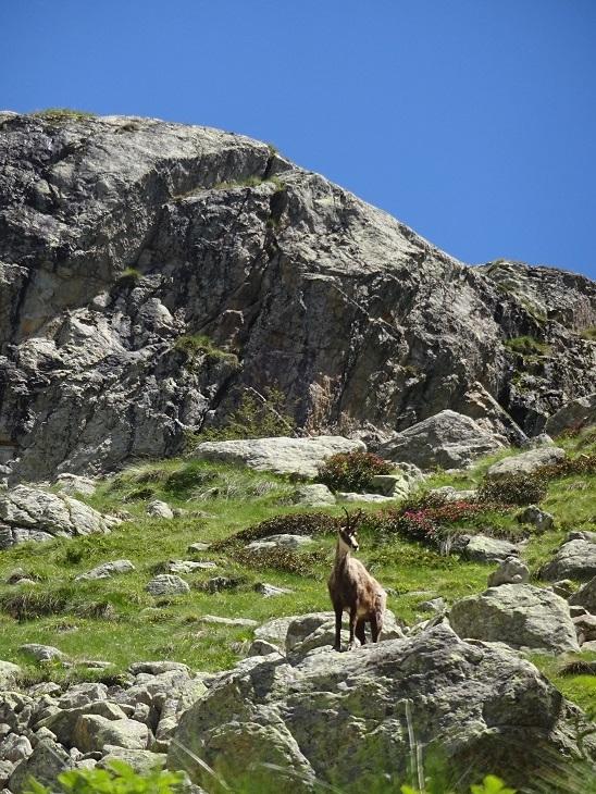 メルカントゥール国立公園で日帰りハイキング_f0194446_03303012.jpg