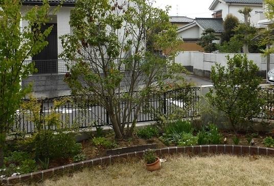 視線をさえぎり、居心地よい庭に。_e0356655_20152275.jpg