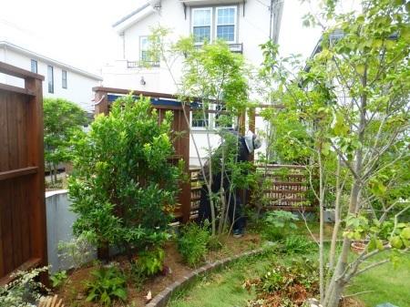 視線をさえぎり、居心地よい庭に。_e0356655_20153492.jpg