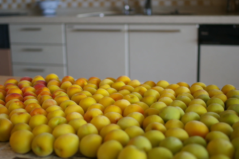 完熟梅を塩漬けに_d0327373_10580649.jpg