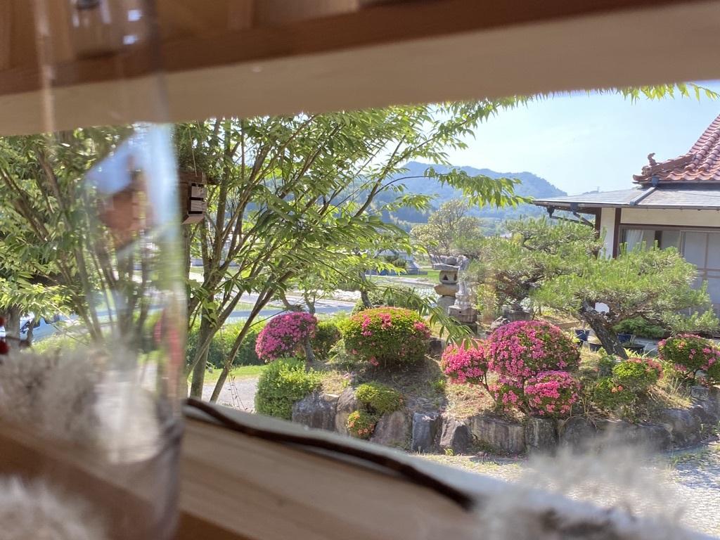 テーブルのスモークツリーと庭のサツキ_c0334574_20065241.jpeg