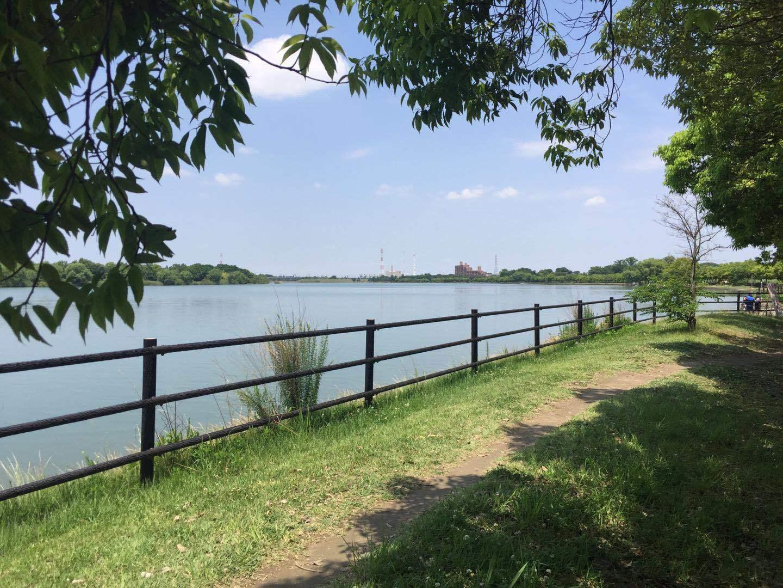 六月七日沿荒川骑车至彩湖参加森林娱_d0007589_14471878.jpg