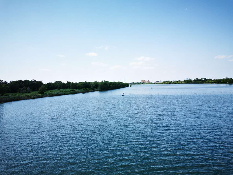 六月七日沿荒川骑车至彩湖参加森林娱_d0007589_14474558.jpg