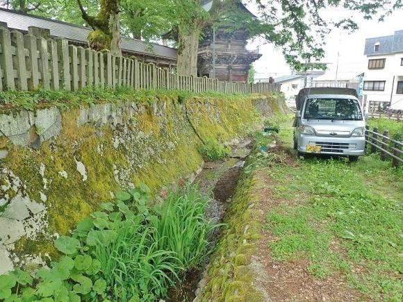 毘沙門堂の石垣脇の水路へ水芭蕉などを移植しました_c0336902_16162026.jpg