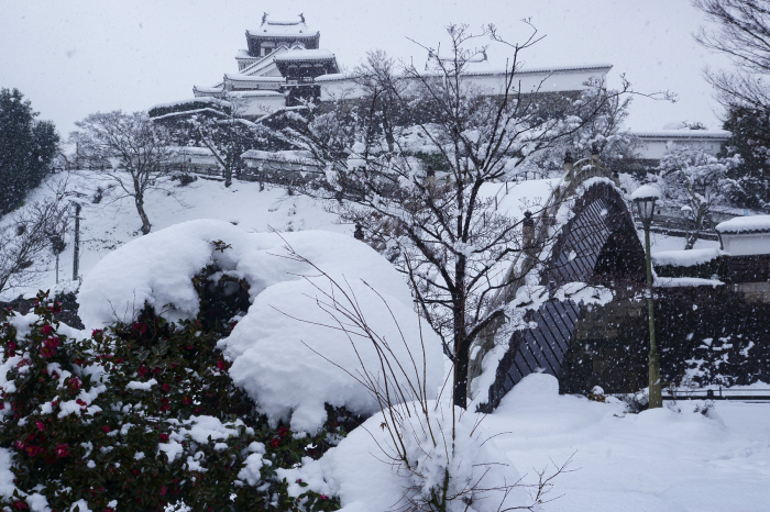 福知山市内_e0177413_20505461.jpg
