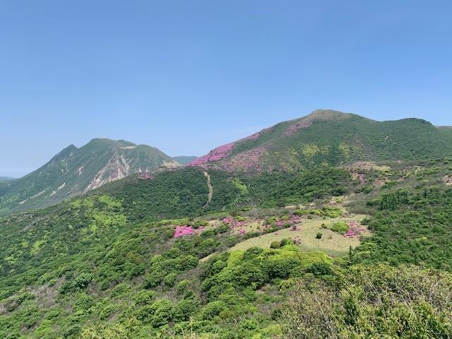 くじゅう連山のミヤマキリシマ♪_d0177220_11420345.jpg