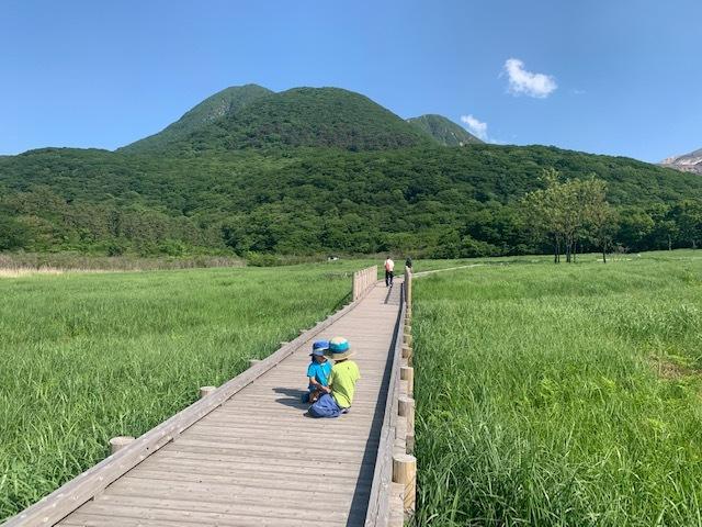 くじゅう連山のミヤマキリシマ♪_d0177220_11420358.jpg