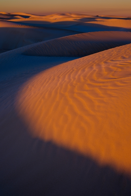 Dunes 色の世界_f0050534_09083552.jpg