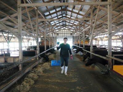 熊本県産黒毛和牛100%のハンバーグステーキをまもなく販売スタート!牧草も自ら育てるこだわり!_a0254656_19205865.jpg