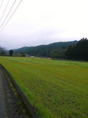 熊本県産黒毛和牛100%のハンバーグステーキをまもなく販売スタート!牧草も自ら育てるこだわり!_a0254656_19315338.jpg