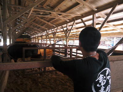 熊本県産黒毛和牛100%のハンバーグステーキをまもなく販売スタート!牧草も自ら育てるこだわり!_a0254656_19574885.jpg