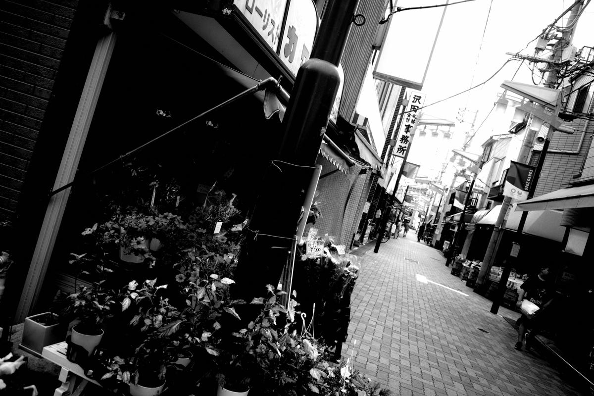 目指せ京島~Ⅳ_c0084666_12180245.jpg