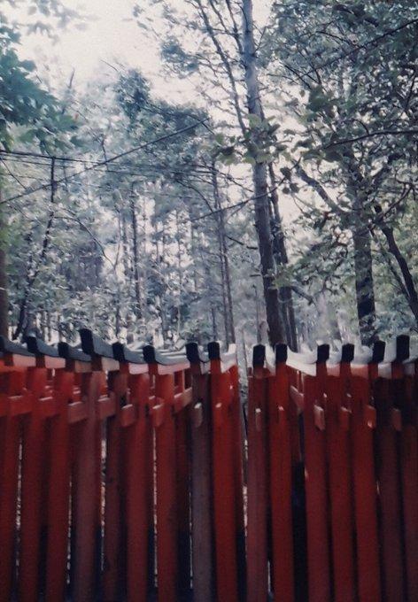【夥しすぎて記事分けますね】アナログ写真photomyneスキャン;京都奈良湖東オタモイ遊園地懸造り建築物七天王塚ほか_b0116271_10533508.jpg