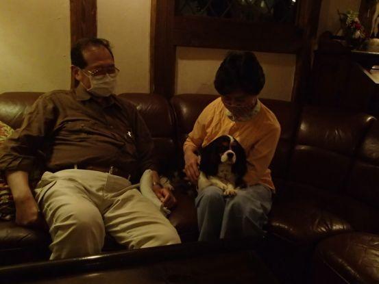 3代目のキャバリアは元保護犬。_f0064906_15563474.jpg