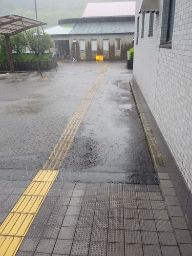 梅雨ですね…_c0219018_09260531.jpg