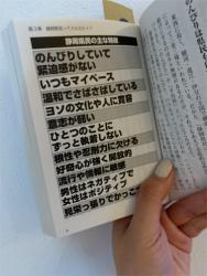 これでいいのか、静岡県!!!_a0253729_12292348.jpg