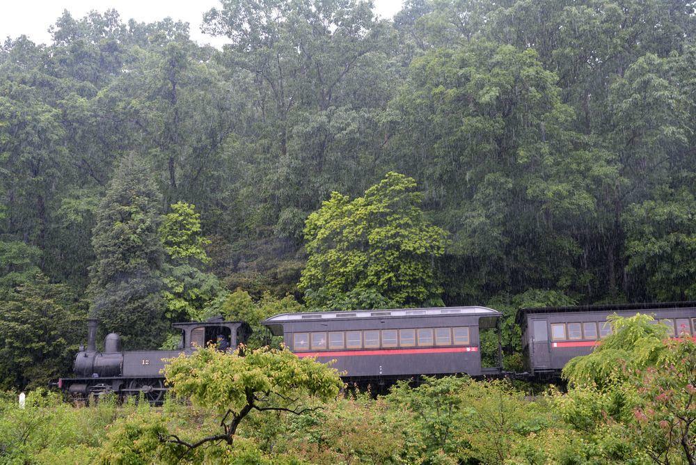 梅雨の12号機関車1_e0373930_22382461.jpg