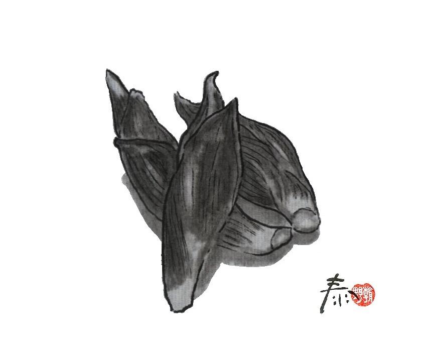 【 夏は香味野菜 】朝野家・香りの散歩道2013.6.12放送分 _f0112434_20485339.jpg