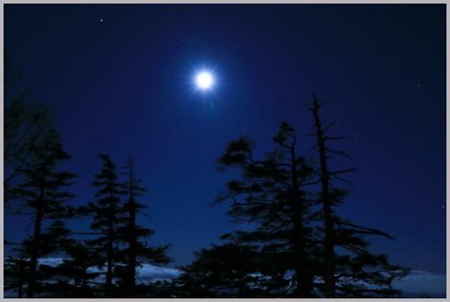 月光_a0123239_19331121.jpg