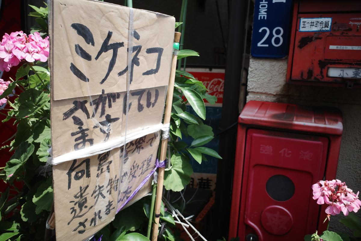 目指せ京島、あげいん~5_c0084666_20574524.jpg