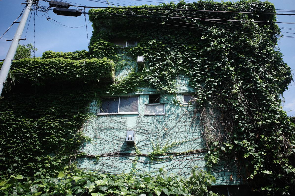 目指せ京島、あげいん~9_c0084666_21302186.jpg