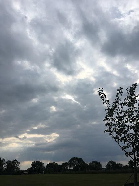コロナ Day84  レナ―タの物語(18) _c0400569_07382540.jpg
