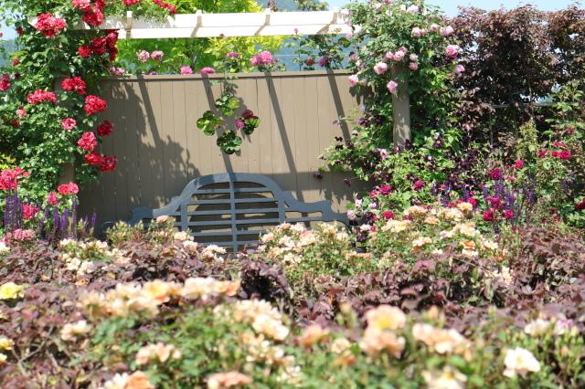 満開の中之条ガーデンズへ~♪_e0397815_16583170.jpg