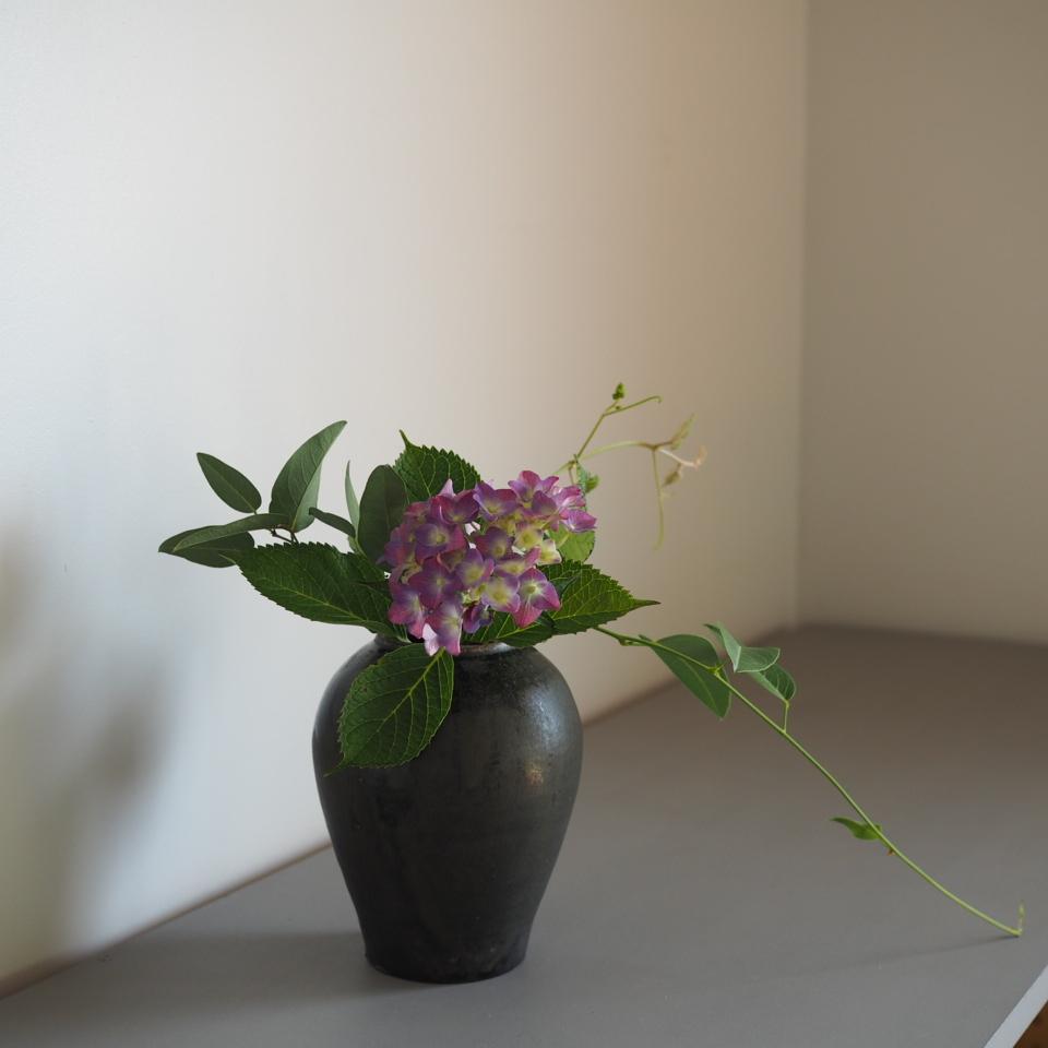緑と花で_b0206421_10274984.jpg