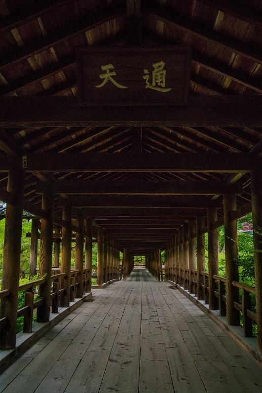 東福寺開山堂のサツキ_e0363038_12455083.jpg