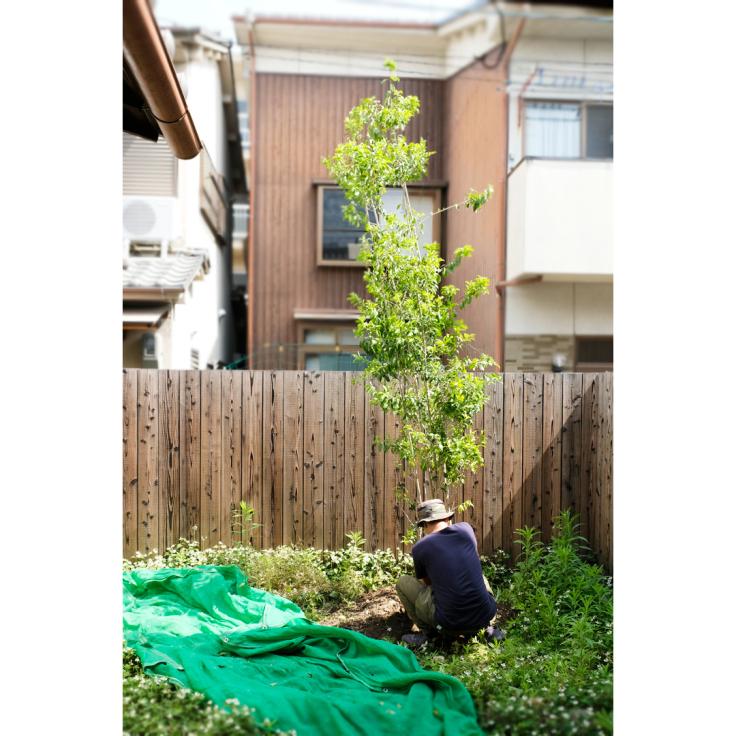 隣家アトリエの庭づくり、はじめました。_d0227246_14364569.jpg