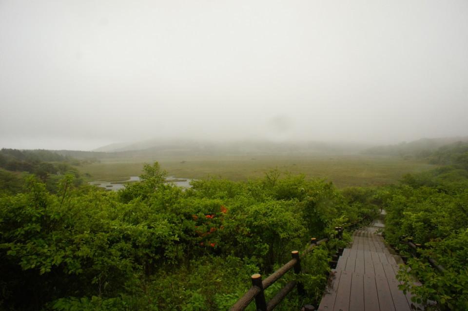 梅雨入り_f0235376_22402303.jpg