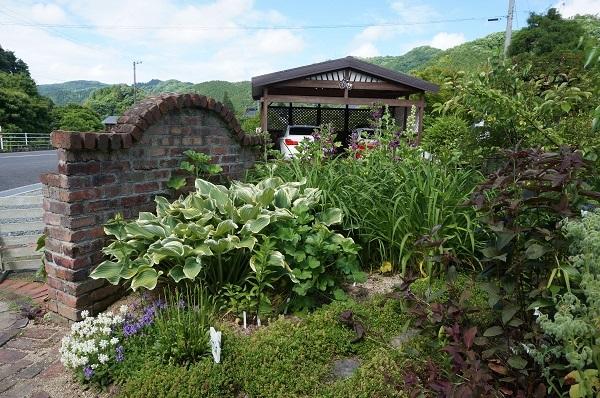 庭がワイルドに_e0365880_20592392.jpg
