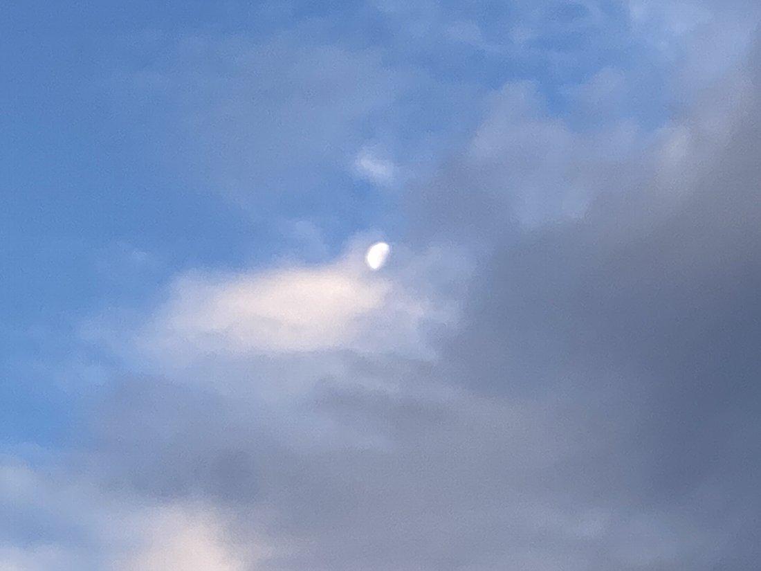 今朝の海岸!_e0065084_22361054.jpg