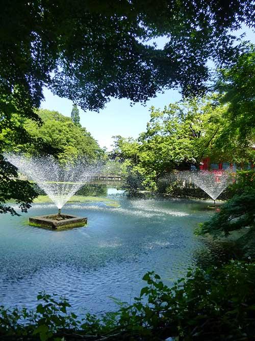 ひさびさの吉祥寺と井の頭公園_d0128697_6333711.jpg