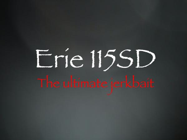 エリー115SD、いよいよ!_d0145899_05085611.png