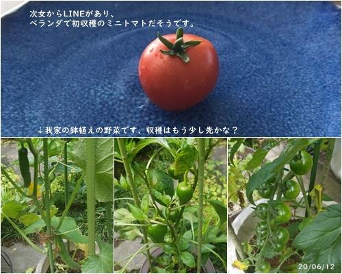 梅雨入り_c0051105_15140938.jpg