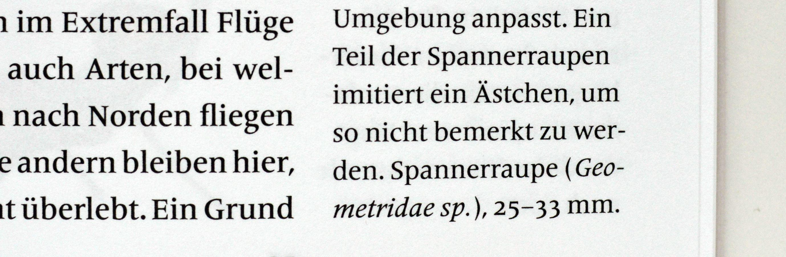 欧文組版のマナー実例: ダーシはハイフンと違う_e0175918_22032466.jpeg