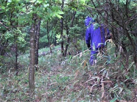 企業の森活動日記 サーラエナジー㈱ サーラの森_d0105723_07481227.jpg