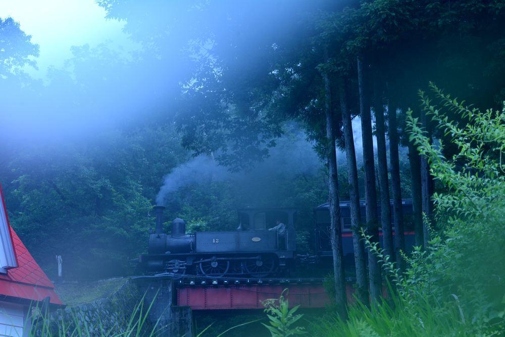 梅雨の12号機関車3_e0373930_17021800.jpg