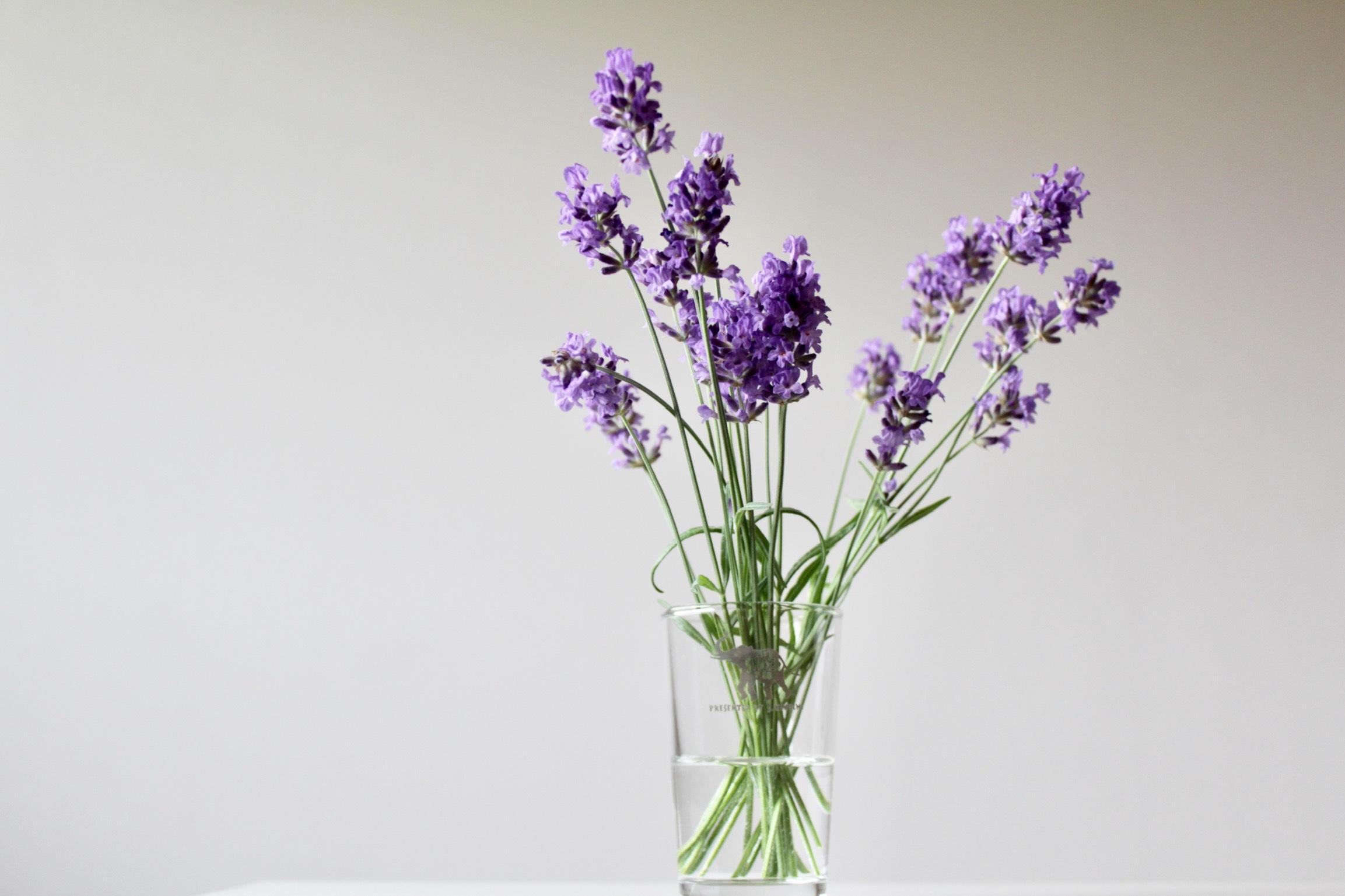 白い花束_b0132338_08230873.jpeg