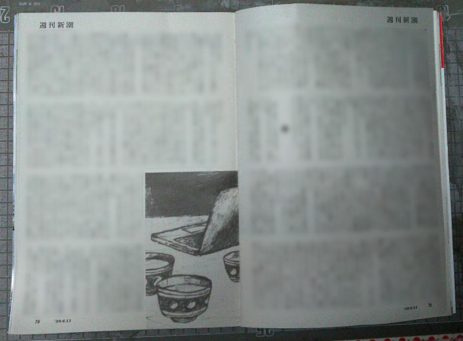 週刊新潮「雷神」挿絵 第21回〜22回_b0136144_11154945.jpg
