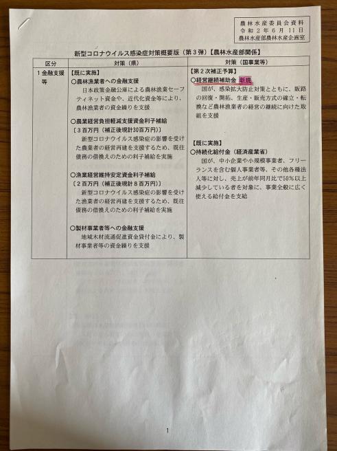 第3弾のコロナ対策〜臨時議会_b0199244_13575452.jpg