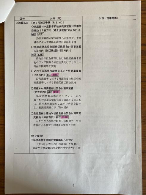 第3弾のコロナ対策〜臨時議会_b0199244_13575572.jpg