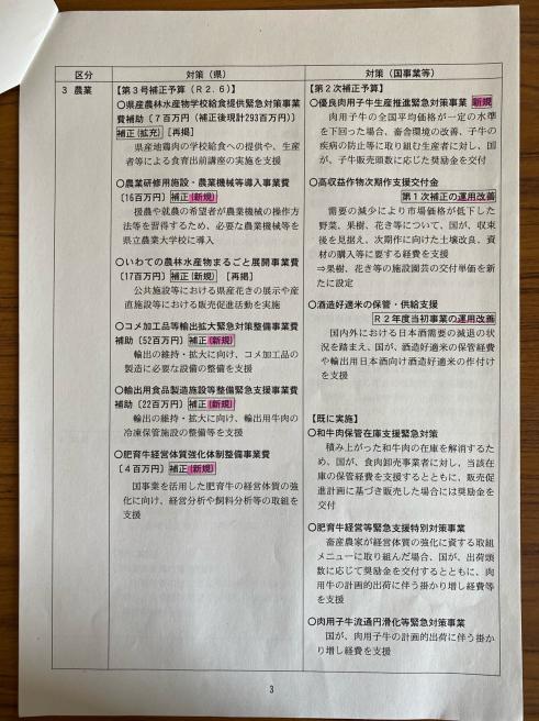 第3弾のコロナ対策〜臨時議会_b0199244_13575741.jpg