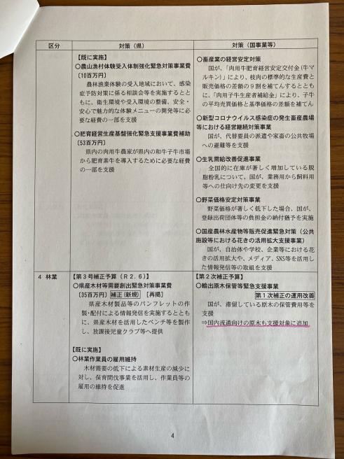 第3弾のコロナ対策〜臨時議会_b0199244_13575840.jpg